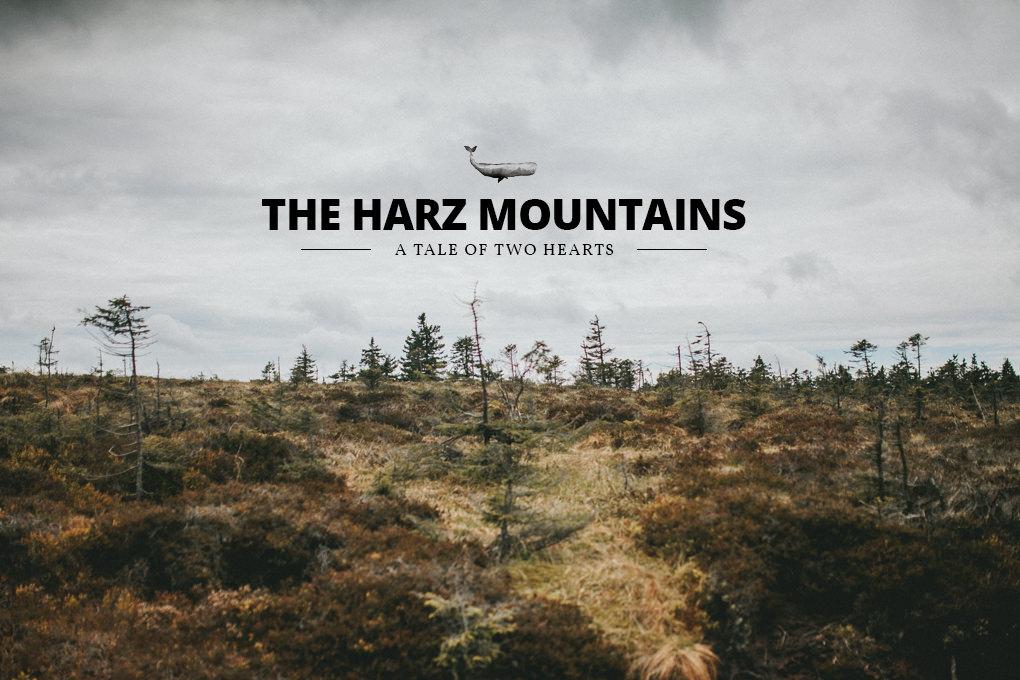 Urlaub im Harz 47