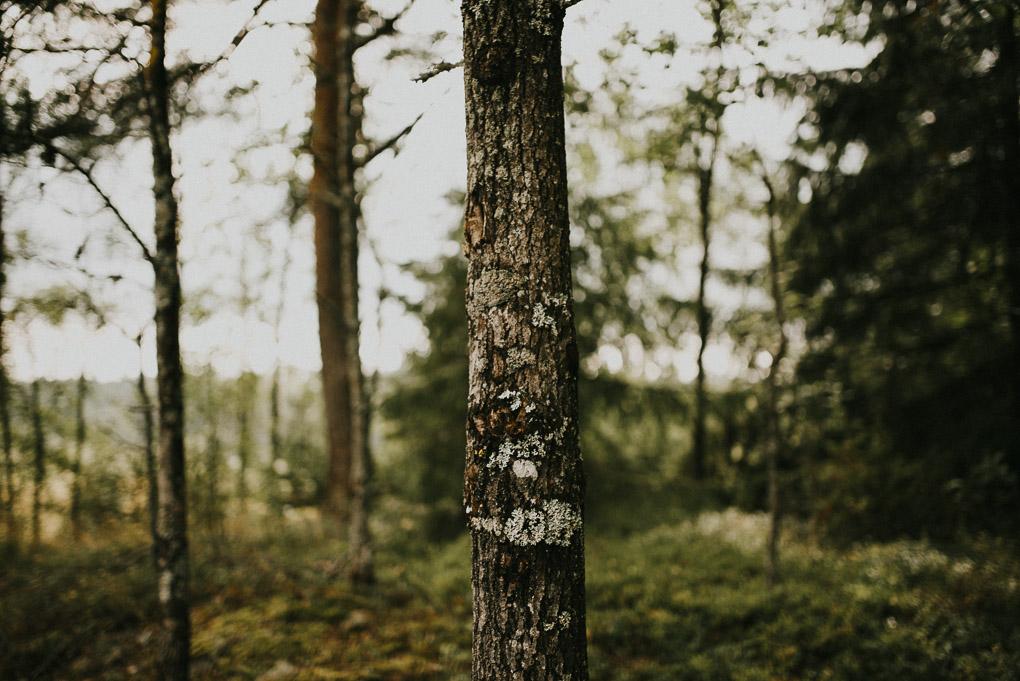 hochzeitsfotograf-oslo-norwegen-005